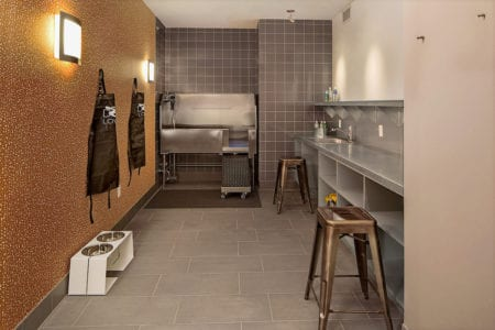 mosso pet friendly apartment pet spa in soma san francisco